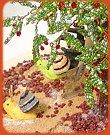 Bonsai piante e piantine di perline tigerbazar for Bonsai ciliegio