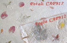 Carta Pergamena Da Stampare Cartoncino Libretti Messa Matrimonio